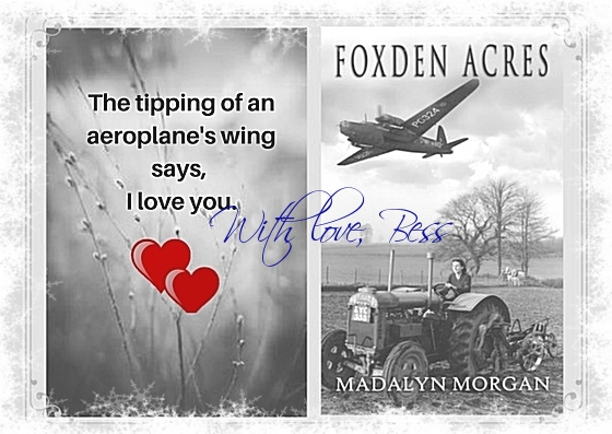 Foxden Acres winter With love Bess