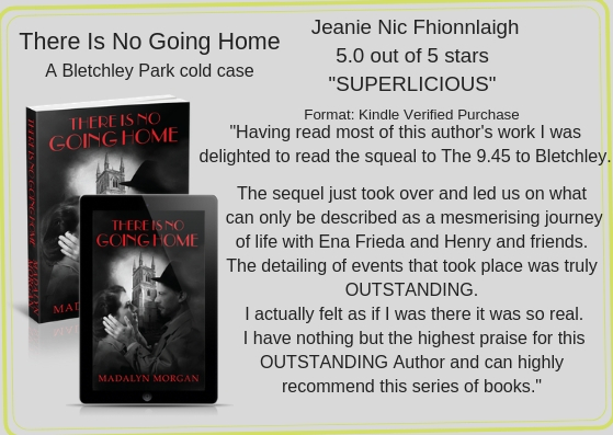 Jeanie Nic Review No Going Home